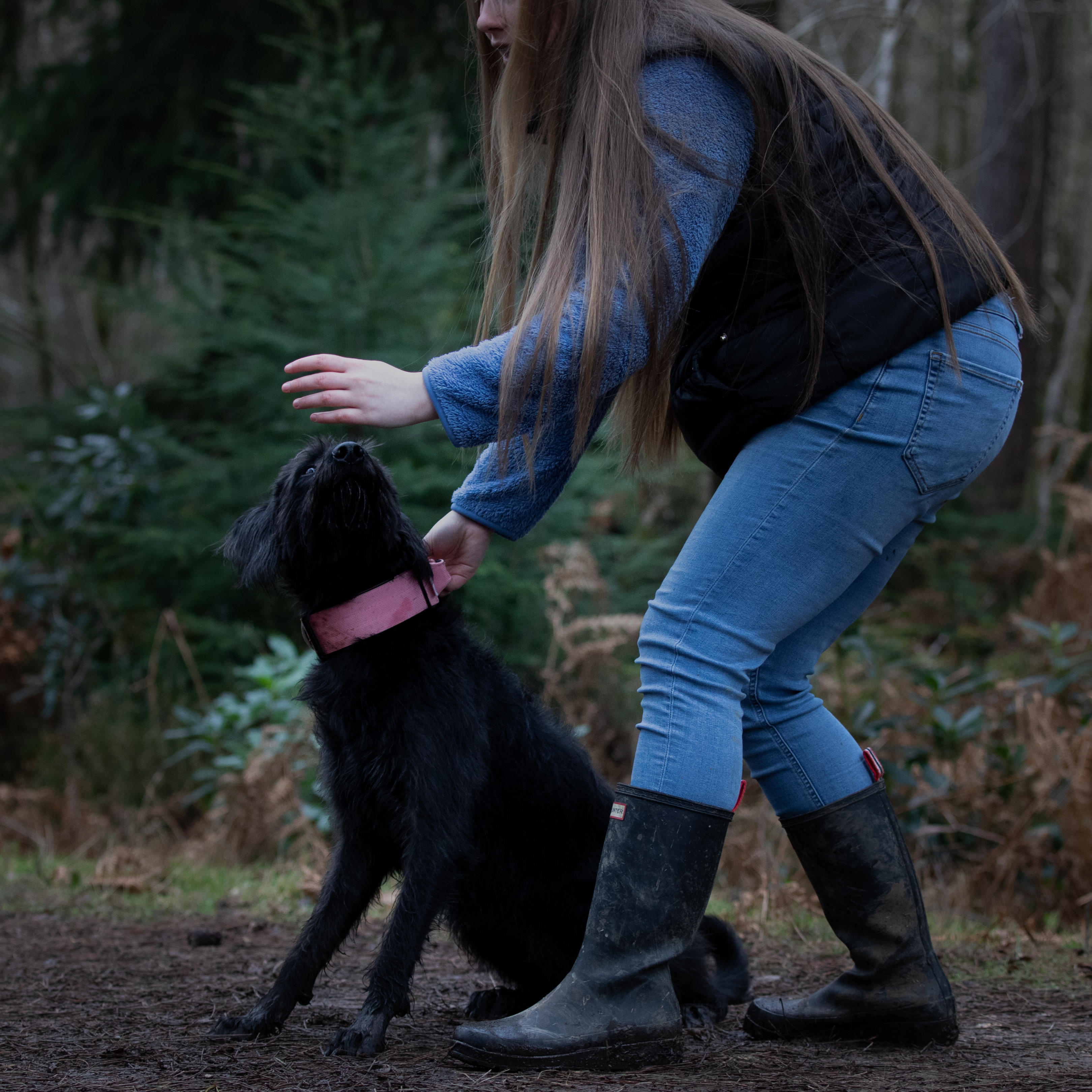 how to train your puppy facebook group (1)